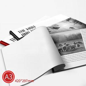 精緻邊條:黑白/A3/單面列印