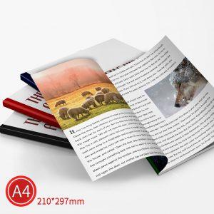 精緻邊條:彩色/A4/雙面列印
